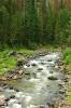 Mountain Stream, Wyoming